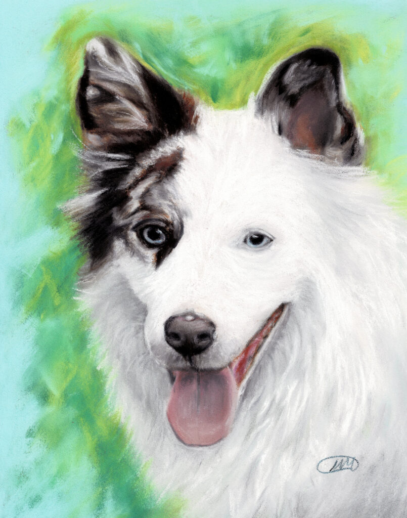 hondenportret in pastel